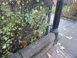 Wall Missing Railings showing lead