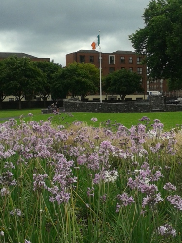 The Tricolour in this case would have been better replaced by the green flag of the United Irish with the harp in gold.