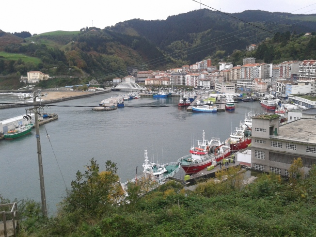 Bermeo Harbour and some Town